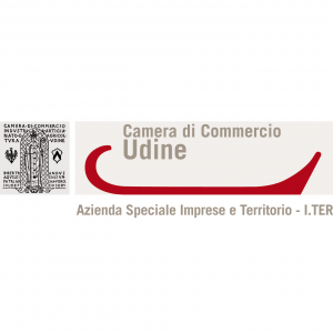 camera-di-commercio-di-udine